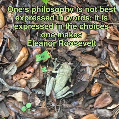 eleanor roosevelt frog